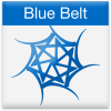 blue-belt-icon-large.preview
